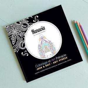Logo and cover creation - Hanaoïa